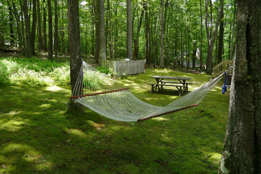 hammock out back