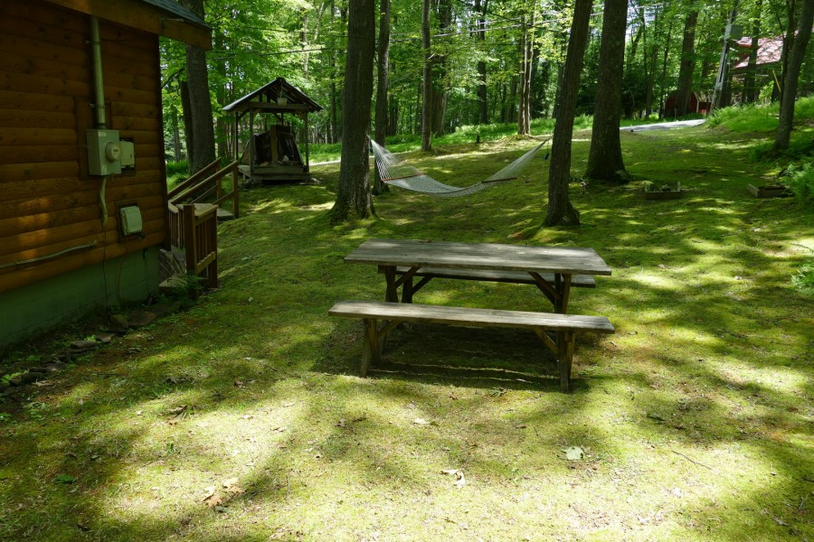 picnic table out back