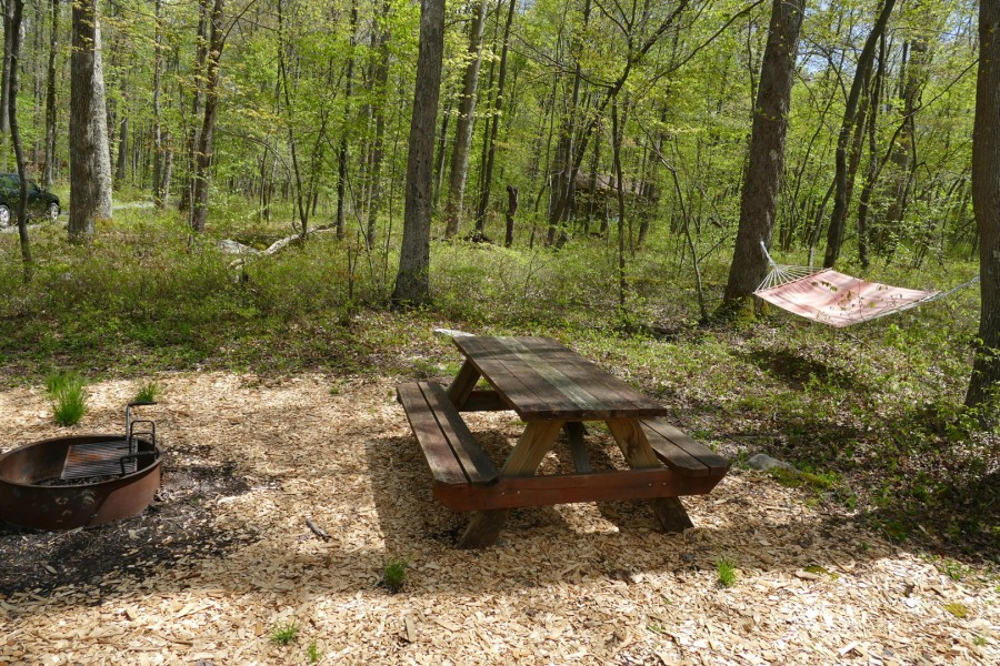 Ardennen Hammock. picnic table. firering