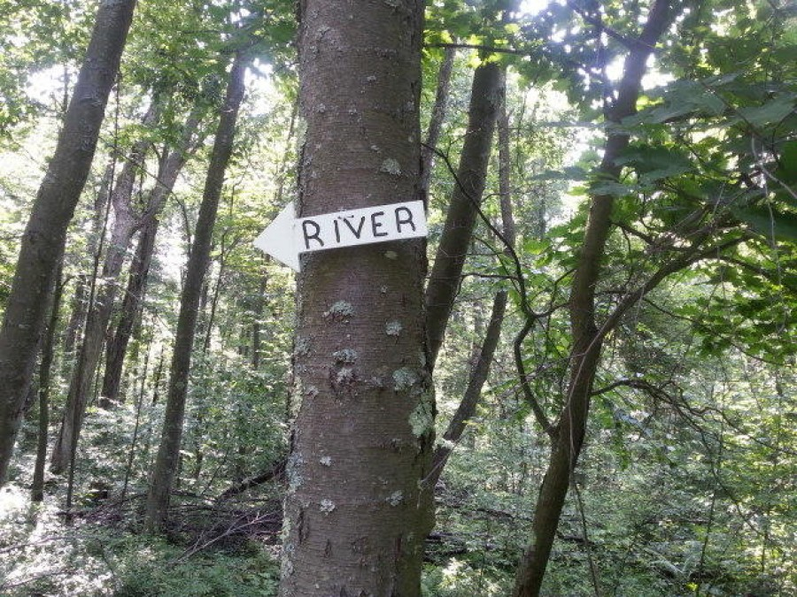 This way to the River