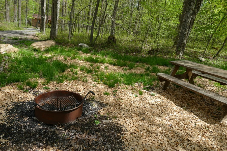 Uzes fire ring and picnic table