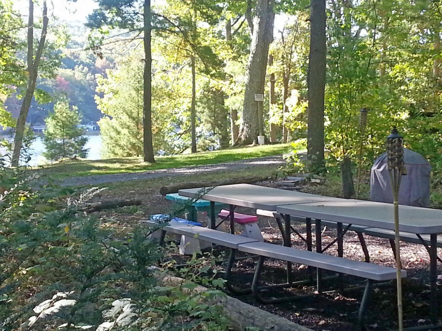 picnic tables calling to you