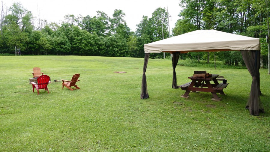 canopy and picnic table