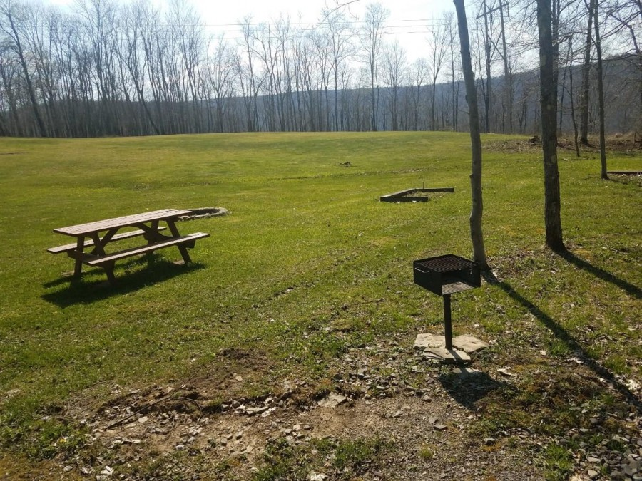 Picnic table and meadow