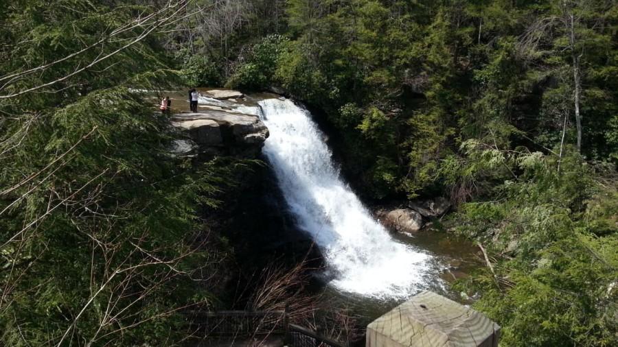 Swallow Falls Park - 5 min