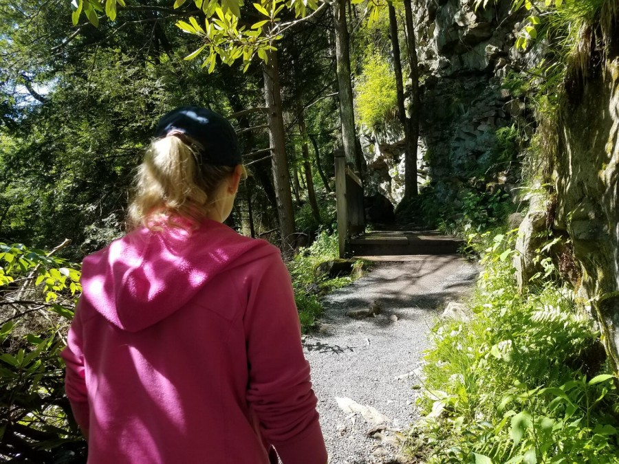Hiking Trails abundant nearby