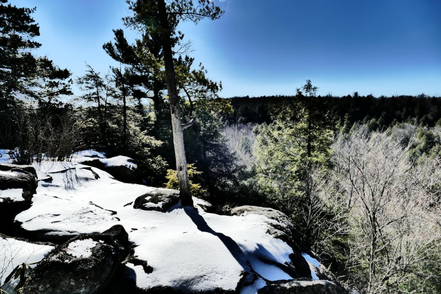 YMR cliff views