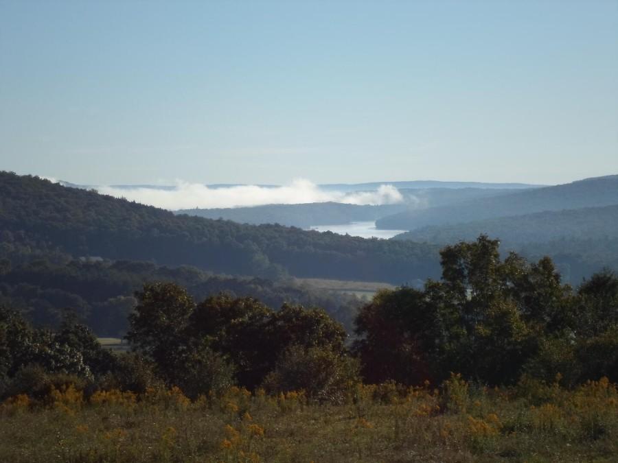 Lakeview monring fog