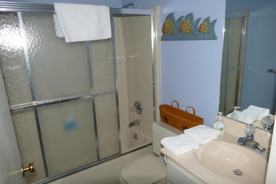 Lower Full Bath_7